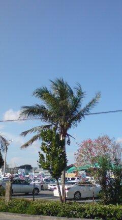 凄い天気(>_<)