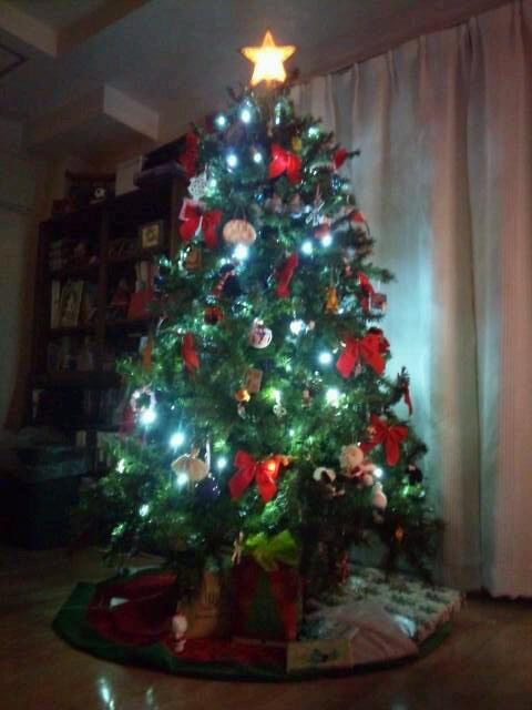 メリークリスマス(o^−^o)